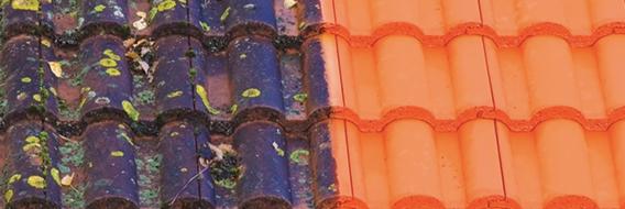 Nettoyage de toiture PACA